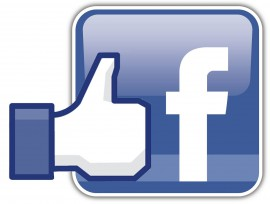 facebook like logo 1-270x204